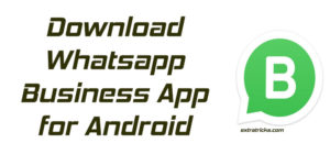 Whatsapp Business Apk for Android